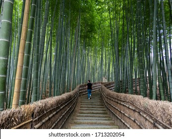 Young man walking through a peaceful bamboo forest background