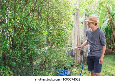 Young man watering backyard lawn using hosepipe.Asian man watering the garden with hose in backyard.