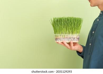 Jeune homme avec une herbe à blé sur fond flou
