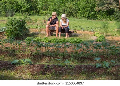 Young man and woman sitting and chatting in a Home Grown Vegetable Garden