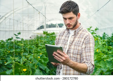 Young man working in a greenhouse recording measurements
