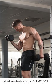 Young Man Working Out Biceps In A Gym - Dumbbell Concentration Curls