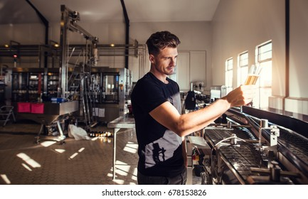 Young man working at small craft beer making factory and checking the quality of beer. Young businessman testing the beer at brewery.