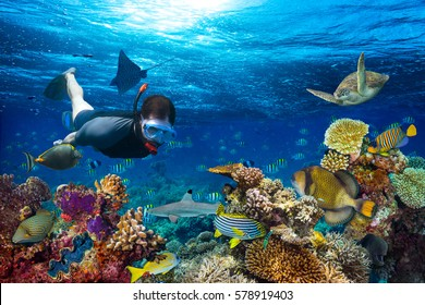 young men snorkeling exploring underwater coral reef landscape background  in the deep blue ocean with colorful fish and marine life