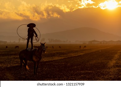 A young Mexican Charro rounds up a herd of horses running through a field on a Mexican Ranch at sunrise
