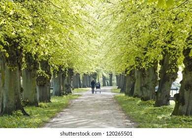 young Mother with Child walking under Linden Trees