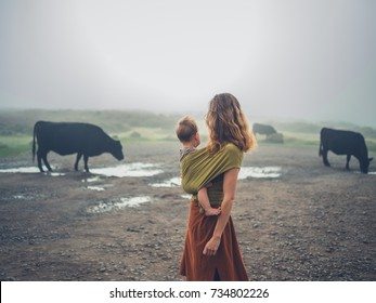 A young mother with her baby in a sling is standing in the fog looking at some cows