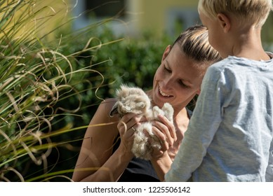 Young mother holding furry cute baby pet rabbit showing it to her toddler son outdoors.