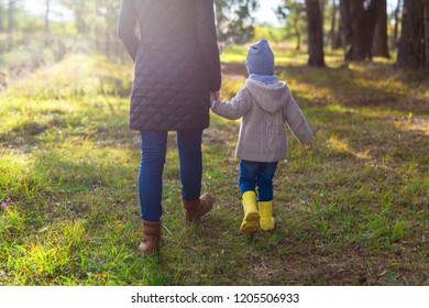 Young mother holding her kid's hand while walking in the forest. Rear view