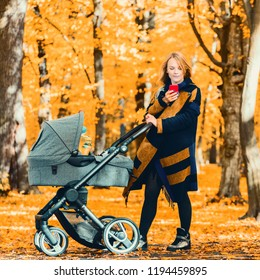 Young mother with a stroller looking at a mobile phone in the park. Walking with an infant in the open air in a pine forest. Newborn, family, child, parenthood. Choice of purchases through the