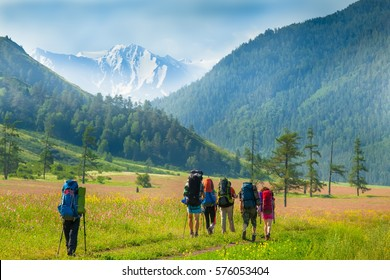 Young mountaineers on the background of alpine landscape, green slopes and high mountain peaks