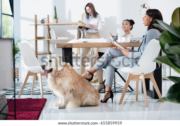 young multiethnic women in formal wear working at office with dog