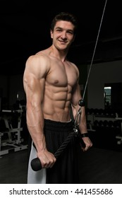 Young Muscular Fitness Bodybuilder Doing Heavy Weight Exercise For Triceps On Machine In The Gym