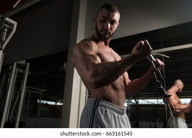 Young Muscular Fitness Bodybuilder Doing Heavy Weight Exercise For Biceps On Machine With Cable In The Gym