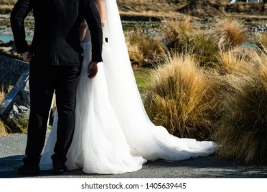 Young newly couple of white wedding dress bride and groom in black suit with dry clump of grass on the bright sunny day.