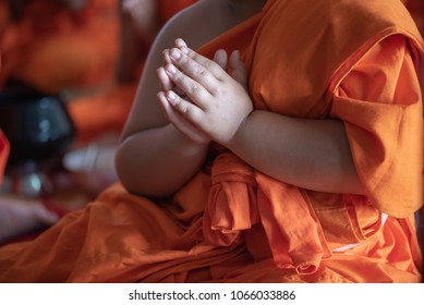 The young novice monks pray in summer at Buddhist temple in Thailand, southeast Asia.
