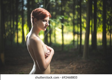 Young nude woman posing sensual in a illuminated forest