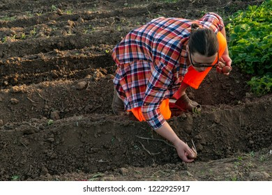 Young peasant woman in orange overalls, hat and plaid shirt planted potatoes on her home plot. Spring is working in the garden. Warm soil, earth, sowing work. There is space for text