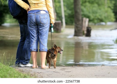 young people and dog looking on overflowing waters of river, natural disaster