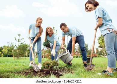 Young people girls and boy volunteers outdoors helping nature planting trees together pouring water from bucket on ground smiling cheerful
