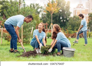 Young people girls and boy volunteers outdoors helping nature planting trees digging ground with shovel talking smiling cheerful