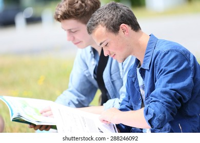 Young people sitting in park to study