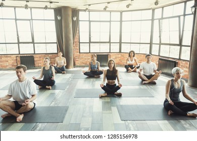 Young people sitting in Sukhasana pose on mats, doing breathing practice. Keep calm and do pranayama, concept
