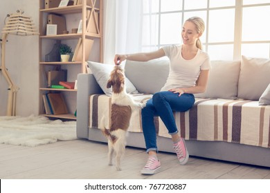 Young person with dog at home leisure