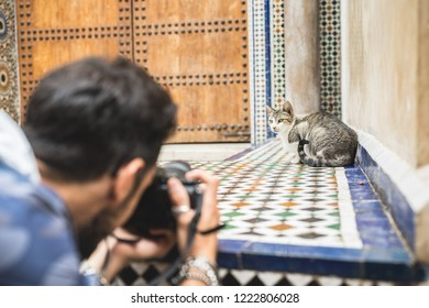 Young photographer takes a picture of a cat sitting on a typical Moroccan patio