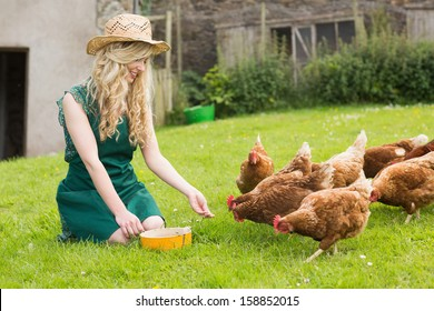 Young pretty blonde feeding her chickens kneeling on the grass