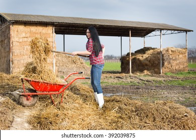 Young pretty country woman working on the farmland, loading wheelbarrow with animal manure and straw