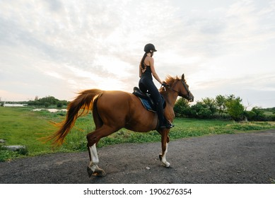 A young pretty girl jockey riding a thoroughbred stallion is engaged in horse riding at sunset. Equestrian sports., horse riding