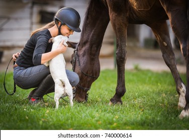 Young pretty girl preparing horse for ride and petting jack russel terrier