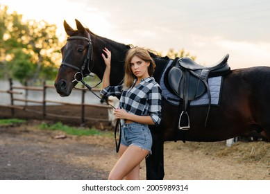 A young pretty girl rider poses near a thoroughbred stallion on a ranch. Horse riding, horse racing