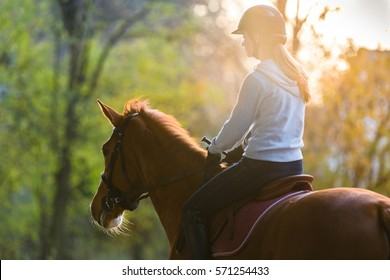 Young pretty girl riding a horse