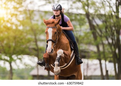 Young pretty girl - riding a horse with backlit leaves behind in spring time