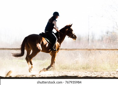 Young pretty girl - riding a horse in winter morning
