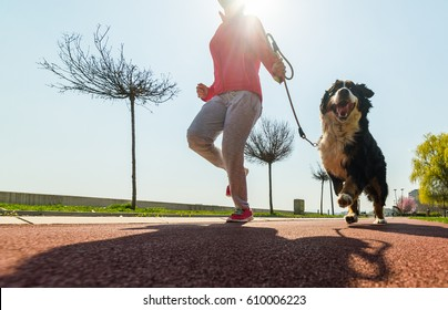 Young pretty girl running outdoor in the spring with her Bernese Mountain dog