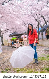 Young pretty girl traveling in Jinhae cherry blossom festival at Jinhae city of South Korea on April 2018.