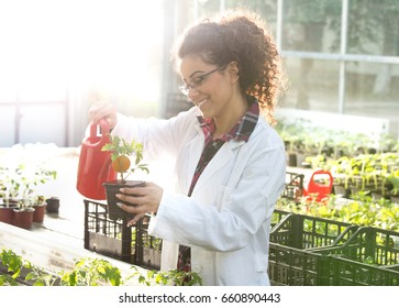 Young pretty woman biologist watering seedlings in flower pots in greenhouse. Plant care and protection concept