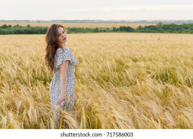 Young pretty woman in dress poses on summer wheat field. Smiling girl on golden meadow. Freedom