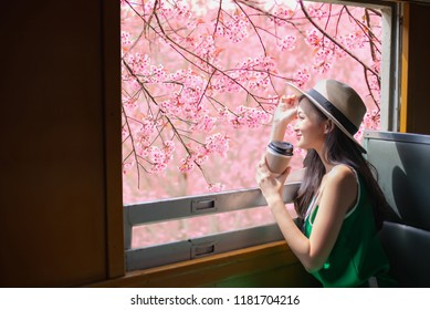 Young pretty woman traveling by the japan old train sitting near the window on sakura bakground nature views,Travel concept.