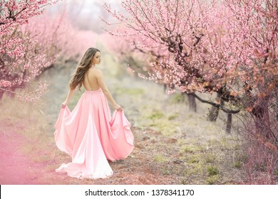A young princess walks in a blooming garden. Girl in a luxurious pink dress with a train. Fashionable toning