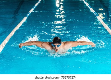 young professional swimmer in competition swimming pool