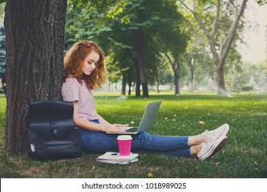 Young redhead woman working with laptop and drinking coffee sitting under a tree in the park. Education concept