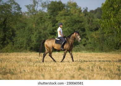 Young rider walk through fields of wheat