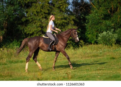 Young rider woman blonde with long hair jumping on a bay horse on a background of a field and a forest