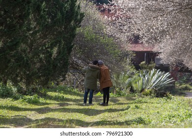 Young romantic couple in garden.
