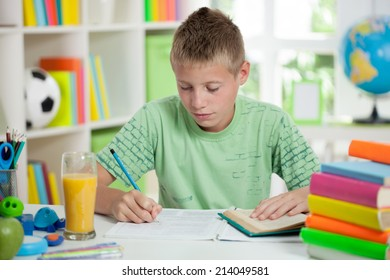 young schoolboy studyng at home