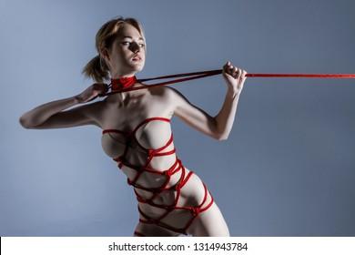 Sexy Shibari